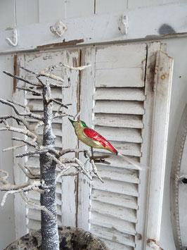 uralter Glasvogel  rot-grün-gold