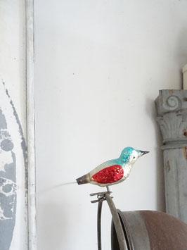Glasvogel uralt mehrfarbig