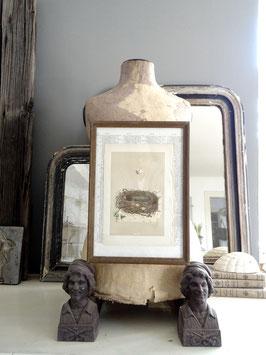 antike gerahmte Lithografie NEST I