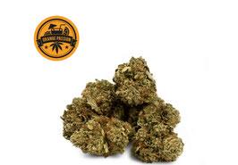 ORANGE PASSION   INDOOR CBD -18% THC GEHALT 1%   ERINNERT AN AN REIFE ORANGEN