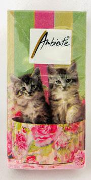 Papier - Taschentücher