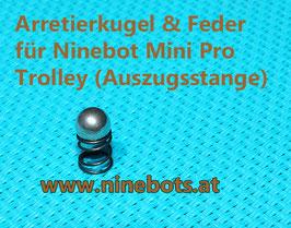 Ninebot Mini Pro by Segway Trolley Feder und Kugel