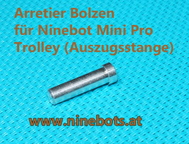 Ninebot Mini Pro Trolley Stift