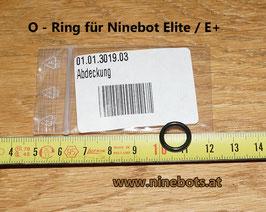 Elite O-Ring