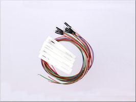 ボルボルーフライト用LEDセット