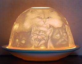 Porzellan-Windlicht Katzen Stubentiger