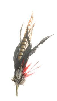 Großer edler Federschmuck aus Fasanen- und Hahnenfedern inkl. Hülse