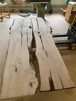 Riesenbaum Brett, Ulmenholz (Rüster) NEU! 2 Bretter