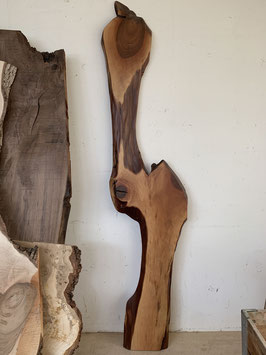 Naturbrett Nussbaum, selten geschweift. Fertig Behandelt.