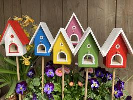 Blumenstecker     Mini-Vogelhäuser Bunt