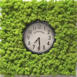 TOUCH GREEN Moosbild 50x50cm Frühlingsgrün mit Uhr Copenhagen