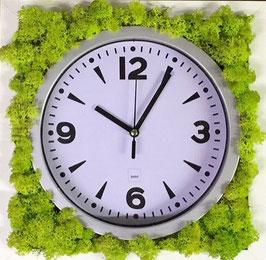 TOUCH GREEN Moosbild 25x25cm Frühlingsgrün mit Uhr Modern Weiss