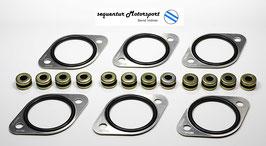 Misab O-Ring Platten Set für 3 Weber 40 / 45 DCOE Doppelvergaser + Schwinggummis