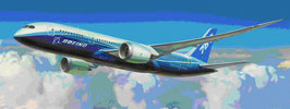 Boing 787-8  DREAMLINER