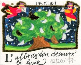 Francesco Musante  - L'albero dove dormono le lune - cm 8x10 bianco