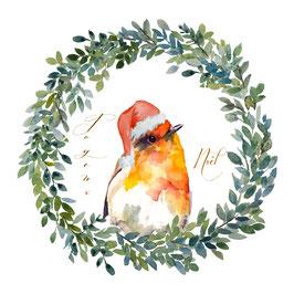 Rouge-gorge , joyeux  Noël