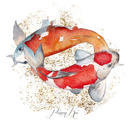 poissons Koï