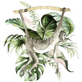 Singe, bouquet de feuilles tropicales