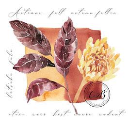 Feuilles et fleurs d'Automne