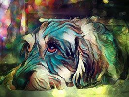Hunde  DACKEL 1- Hunde Kunstdruck -Hochwertiger Kunstdruck auf Leinwand  Animal Print
