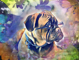 Hunde CRAZY DOG 1- Hunde Kunstdruck -Hochwertiger Kunstdruck auf Leinwand  Animal Print