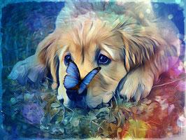 Hunde GOLDIE 1 - Hunde Kunstdruck -Hochwertiger Kunstdruck auf Leinwand  Animal Print