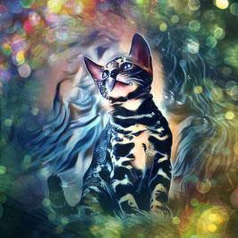 KITTY CAT 8 - Katzen Kunstdruck -Hochwertiger Kunstdruck auf Leinwand  Animal Print