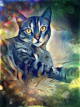 Katze LAZY CAT 2 - Katzen Kunstdruck -Hochwertiger Kunstdruck auf Leinwand  Animal Print