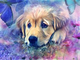 Hunde GOLDIE 3 - Hunde Kunstdruck -Hochwertiger Kunstdruck auf Leinwand  Animal Print