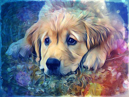 Hunde GOLDIE 2 - Hunde Kunstdruck -Hochwertiger Kunstdruck auf Leinwand  Animal Print
