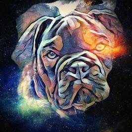 Hunde BULLI 3 - Kunstdruck Bulldogge - Kunstdruck -Hochwertiger Kunstdruck auf Leinwand
