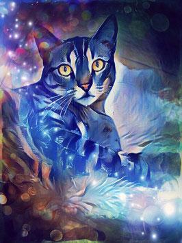 Katze LAZY CAT 3 - Katzen Kunstdruck -Hochwertiger Kunstdruck auf Leinwand  Animal Print