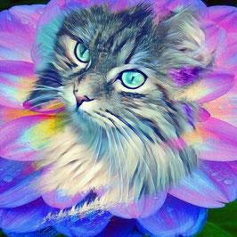 KITTY CAT 9 - Katzen Kunstdruck -Hochwertiger Kunstdruck auf Leinwand  Animal Print