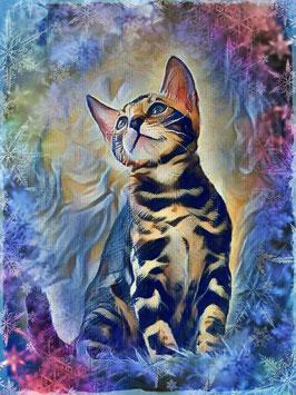KITTY CAT 2- Katzen Kunstdruck -Hochwertiger Kunstdruck auf Leinwand  Animal Print