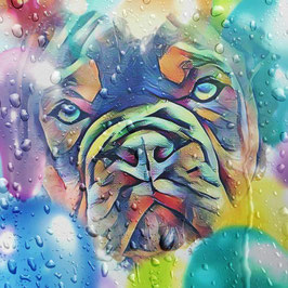 Hunde BULLI 5 - Kunstdruck Bulldogge - Kunstdruck -Hochwertiger Kunstdruck auf Leinwand