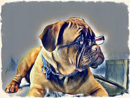 Hunde CRAZY DOG 2 - Hunde Kunstdruck -Hochwertiger Kunstdruck auf Leinwand  Animal Print