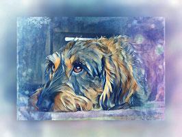 Hunde  DACKEL 2- Hunde Kunstdruck -Hochwertiger Kunstdruck auf Leinwand  Animal Print