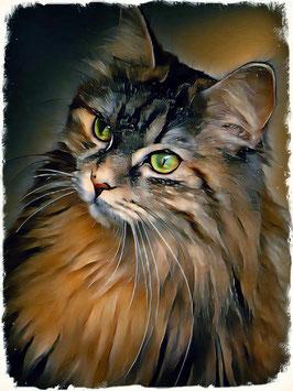 KITTY CAT 10 - Katzen Kunstdruck -Hochwertiger Kunstdruck auf Leinwand  Animal Print