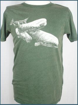 Grünes Herren Bio Baumwollshirt Wale