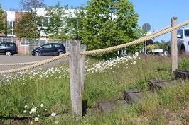 Grundstücksbegrenzung durch Seile Ø 30 mm
