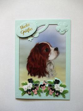 Hunde, Grußkarte, verschiedene