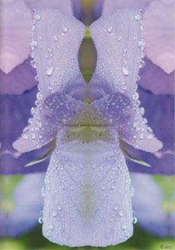 Blumenengel