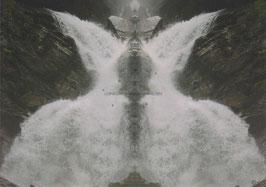 Der Drache 1 (Edition Soul of Nature)