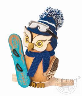 Eule mit Snowboard