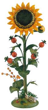 Blumeninsel - Sonnenblume