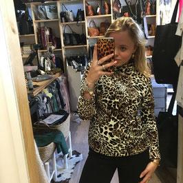 Velvet leopard coll