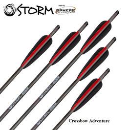6 Armbrustpfeile Sphere Storm Carbon 20''