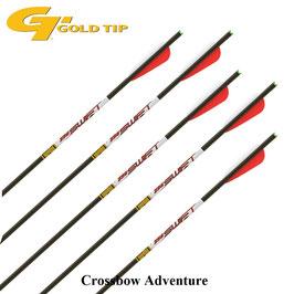 "6 Stück 22"" GoldTip Laser Swift Pro Carbon Bolzen"