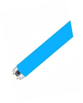 T8 (T26) * 67 blau