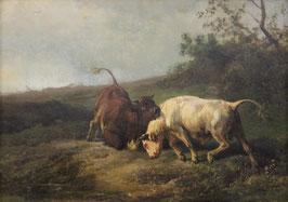 Tom, Jan Bedijs (1813-1894)
